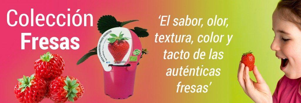 Fresas, ecologico, fitoralia, el torruco, centro de jardineria, jardineria, huerto urbano, vivero, paisajismo, villanueva de la serena, don benito, badajoz, caceres, extremadura