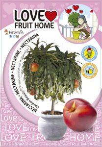 Frutal enando, love fruit home, fitoralia, el torruco, centro jardineria, vivero, plantas, frutal, terraza, huerto, maceta, jardin, paisajismo, villanueva serena, don benito, badajoz, extremadura